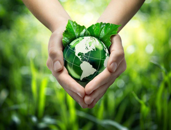 protégeons la terre